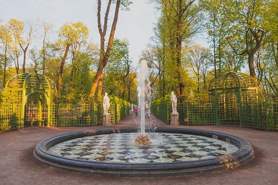 باغ تابستانی روسیه