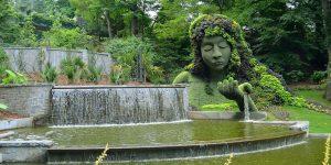 باغ بوتانیکال گیاه شناسی