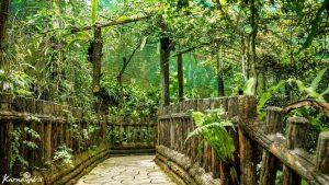 باغ پروانه ها در کوالالامپور