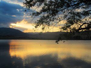 دریاچه لیسی