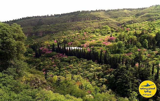موقعیت و مشخصات باغ گیاه شناسی تفلیس گرجستان