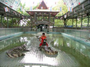 مزرعه تمساح ها