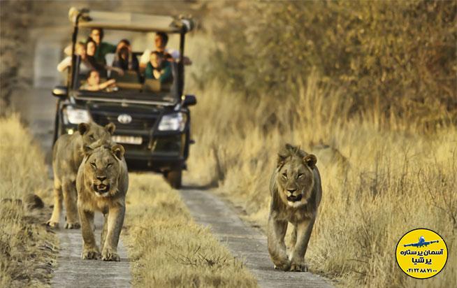 پارک ملی کروگر -آفریقای جنوبی