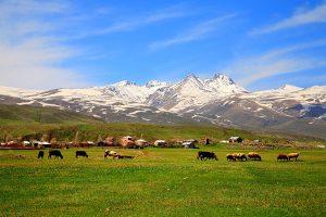 کوه آراگاتس