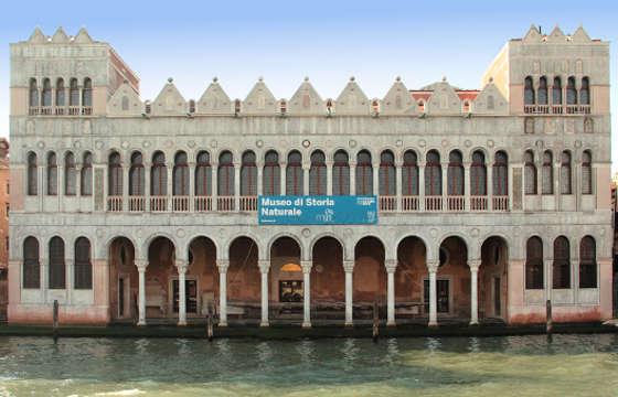 موزه ونیز