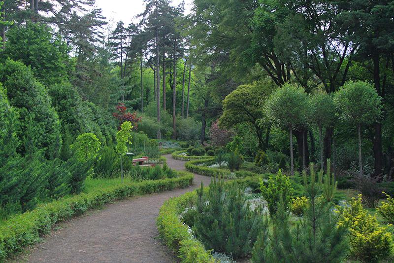 باغ گیاه شناسی تفلیس بهشت دیدنی تور گرجستان