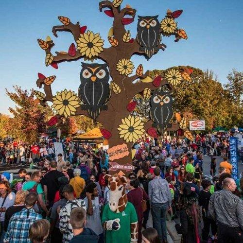 فستیوال های فراموش نشدنی گرجستان