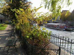 پل روی رودخانه ی سن پاریس