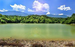 پوشش گیاهی اطراف دریاچه ی الیمالات