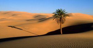 تور کویر مصر 98