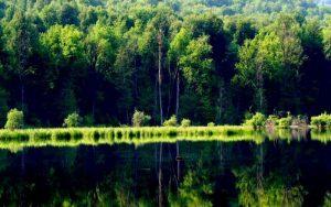 سکون آب دریاچه ی چورت