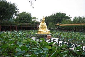 باغ بائومو