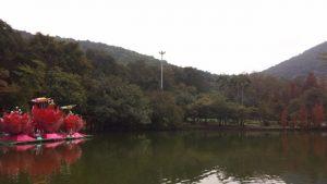 کوهستان بایون