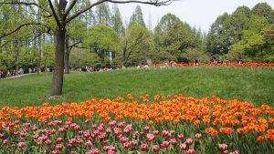 Prince Bay Park
