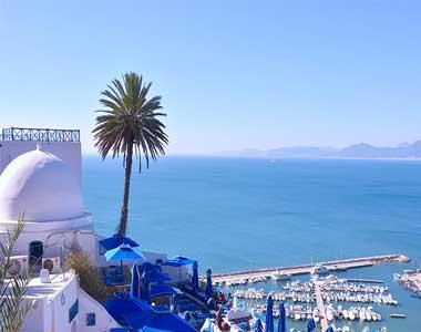 تورهای تونس