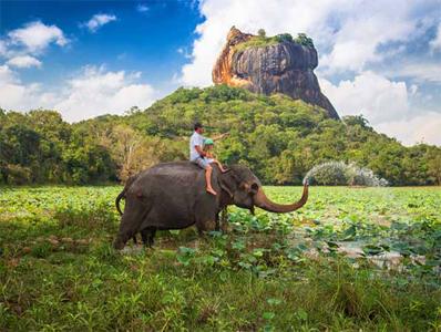 تور سریلانکا ویژه دی ماه