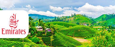 تور سریلانکا 8 روزه