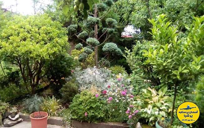 باغ گیاه شناسی زوگدیدی گرجستان
