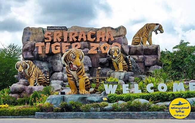 باغ وحش ببر سیراچا